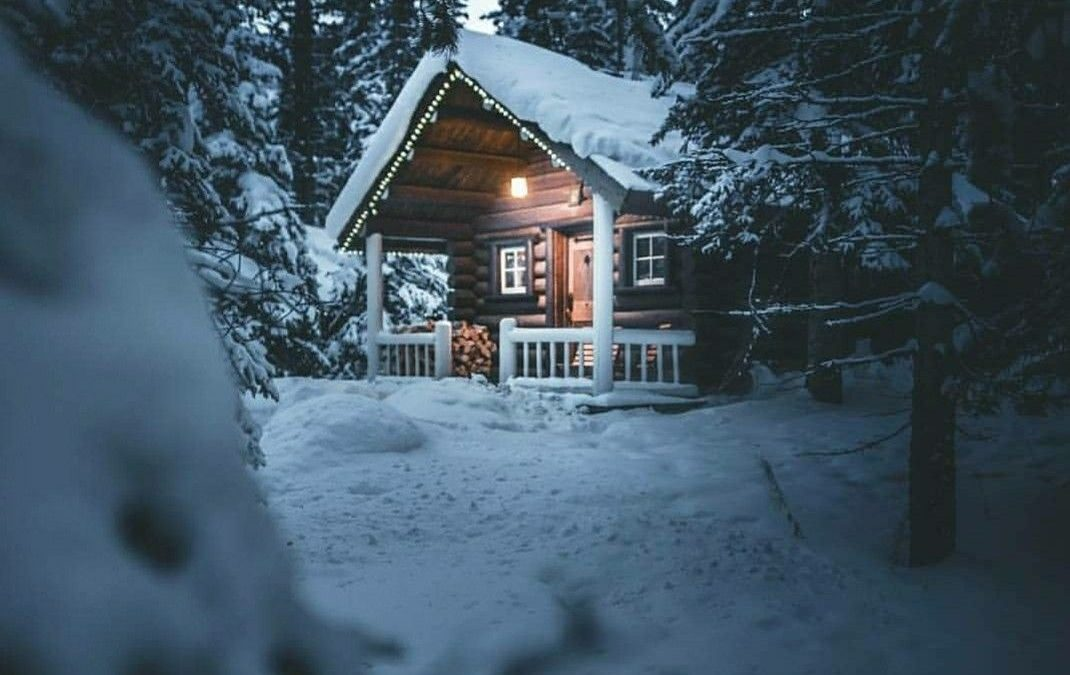 4 Unique Ways to Transform Your Outdoor Shed For the Holidays